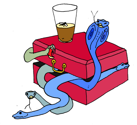 box of snakes